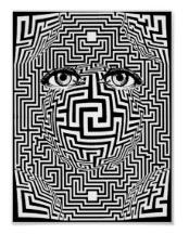 maze-self