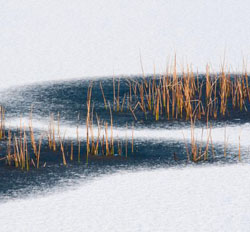 snow-pond-ice