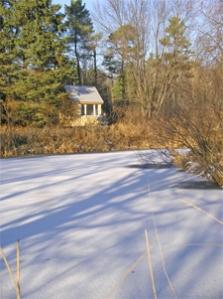 pond-cabin2