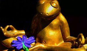 Golden frog, meditating