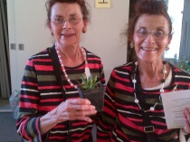 Helen Craig (left) won a baby cardinal flower. She and sister Lois are regulars at the Carp dinners.